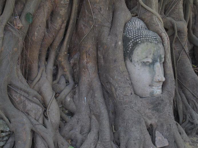 泰國大城瑪哈達寺