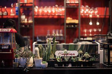 曼谷咖啡酒吧
